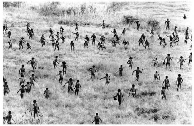 На этой фотографии, снятой в 1960-х гг., оказалась запечатлена одна из войн, которые папуасы ведут друг против друга - Первобытная война. Тактика каменного века | Военно-исторический портал Warspot.ru