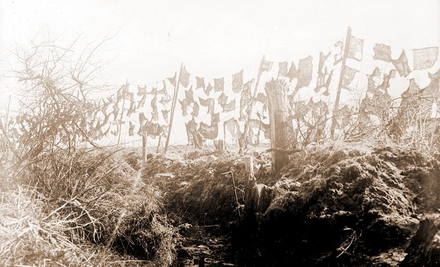 Маскировочные заграждения. Франция, 1918 год - Замаскироваться, чтобы выжить | Военно-исторический портал Warspot.ru