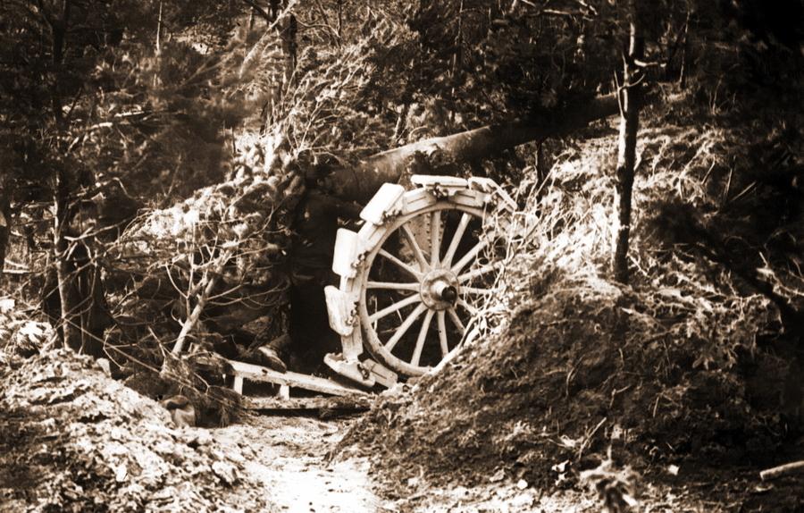 Замаскированное орудие. Франция, 1915 год - Замаскироваться, чтобы выжить | Военно-исторический портал Warspot.ru
