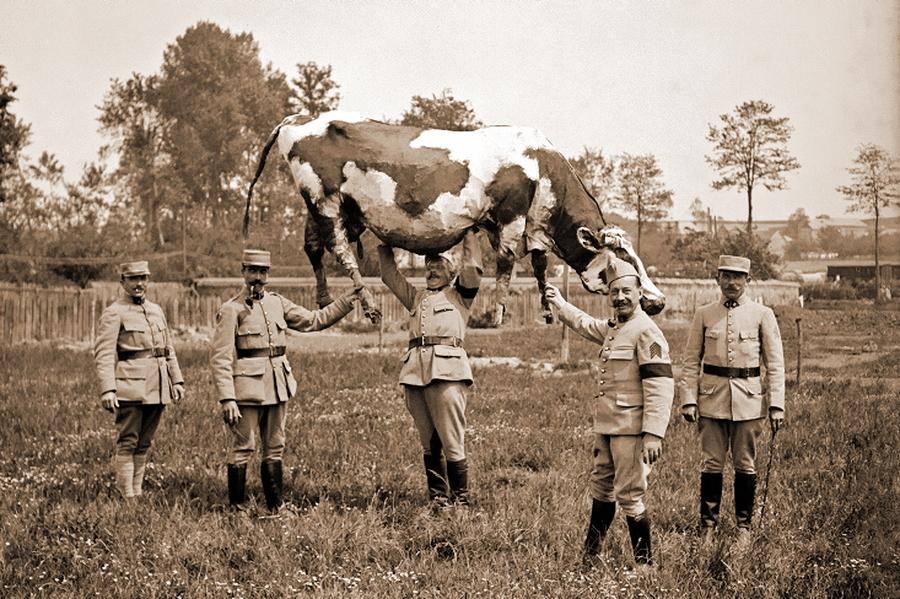 Камуфляж — это не только маскирующая окраска. Французские солдаты с коровой из папье-маше, используемой как укрытие для наблюдателей и снайперов - Замаскироваться, чтобы выжить | Военно-исторический портал Warspot.ru