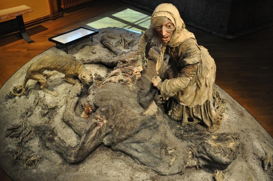 Старуха обдирает павшую во время войны лошадь. Диорама из Музея армии в Стокгольме