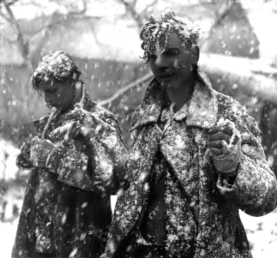 машинист очень фото пленных немцев зимой приехали