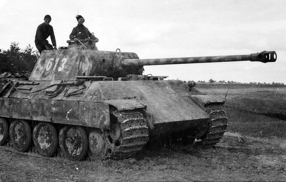 «Пантера» №613 из состава 5-го танкового полка СС. kriegsberichter-archive.com - Операция «Ильзе» | Warspot.ru