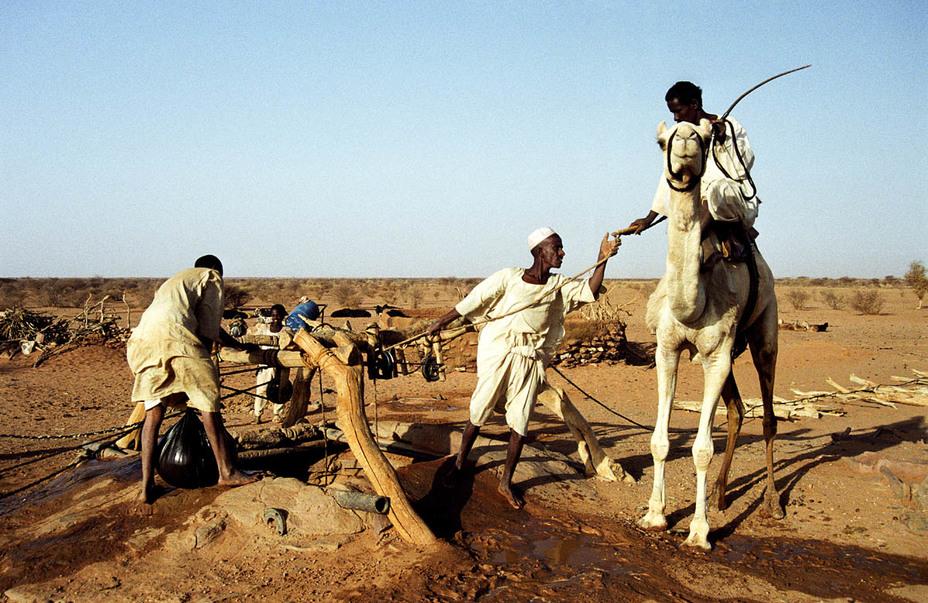 Вода в пустыне — на вес золота - Вода на войне | Warspot.ru