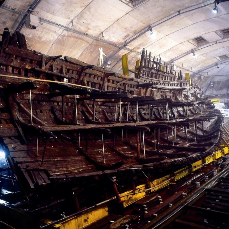 Поднятые с морского дна останки Mary Rose - Неизвестная армада | Warspot.ru