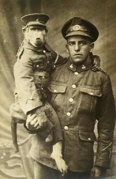 Рядовой Альберт Марр и его друг бабуин Джеки. todayinhistory.blog