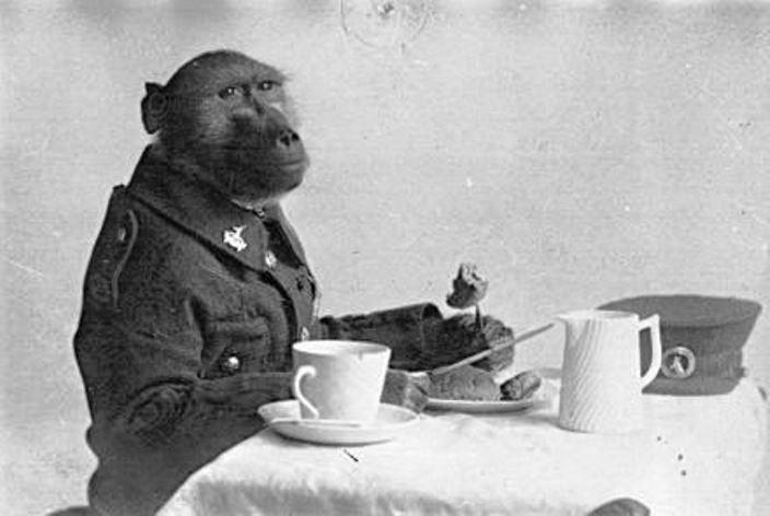 Джеки за завтраком. samilhistory.com - Капрал Джеки — самый необычный солдат Первой мировой | Warspot.ru