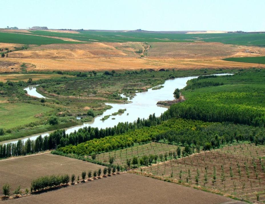 Поля вдоль реки Тигр в современном Ираке. За прошедшие тысячелетия эта картина изменилась незначительно dasanderemittelalter.net - Война родилась здесь | Warspot.ru