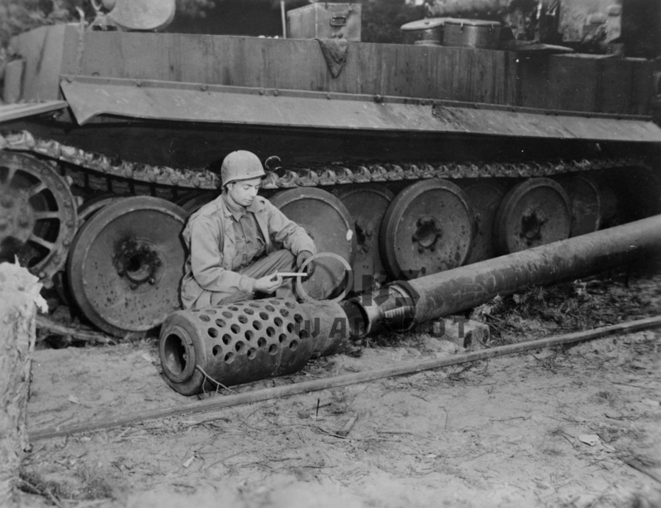 """17 cm Kanone 72, it differed from a conventional gun with a muzzle brake.  Some """"experts"""" hastened to christen her an E-100 gun - Overgrowth Cricket 