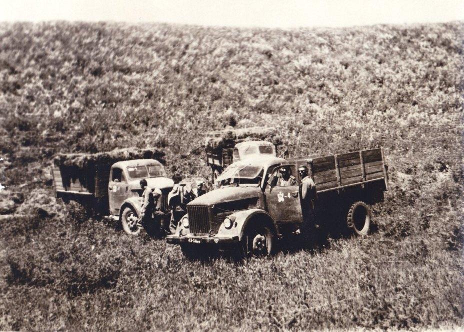 Личный состав и машины ГАЗ-63 отдельного автомобильного батальона на вывозке сена с полей. Фото из архива автора